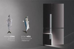 Trung tâm sửa tủ lạnh Thanh Hóa giới thiệu sản phẩm tủ lạnh đẳng cấp